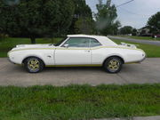 1969 Oldsmobile 442 cameo white,  fire frost gold with black pin strip